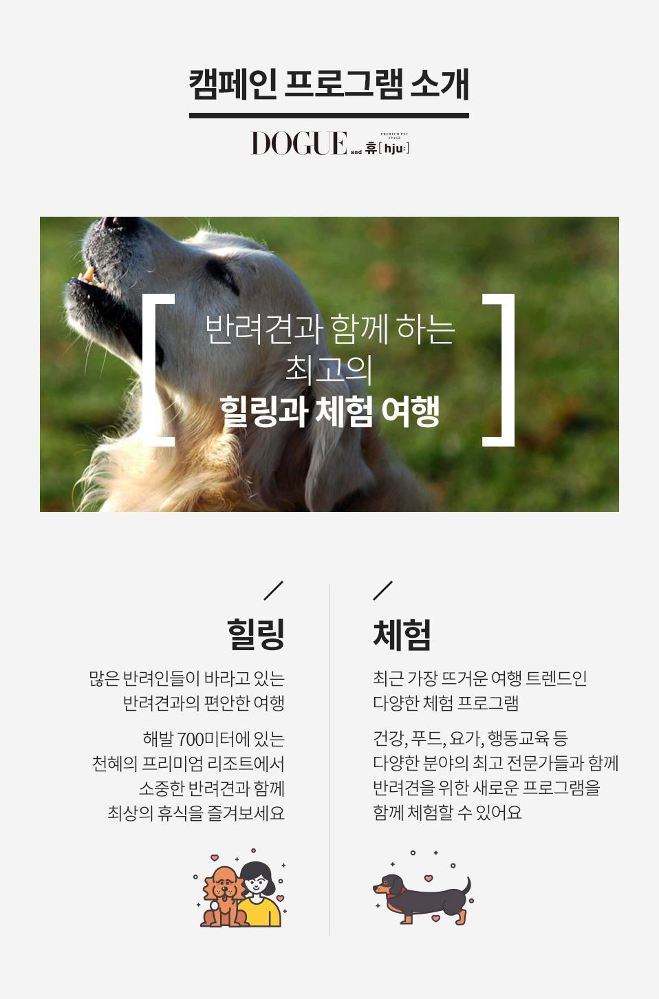 캠페인 프로그램 소개